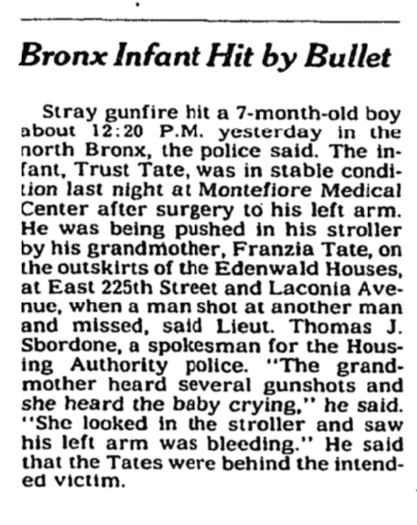 NYTimes, New York Times, Trust Tate, Stray Bullet